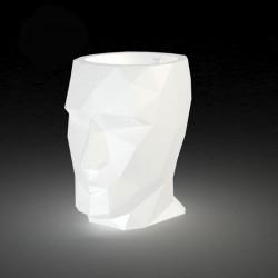 阿丹罐子明亮冯多姆带领白色70